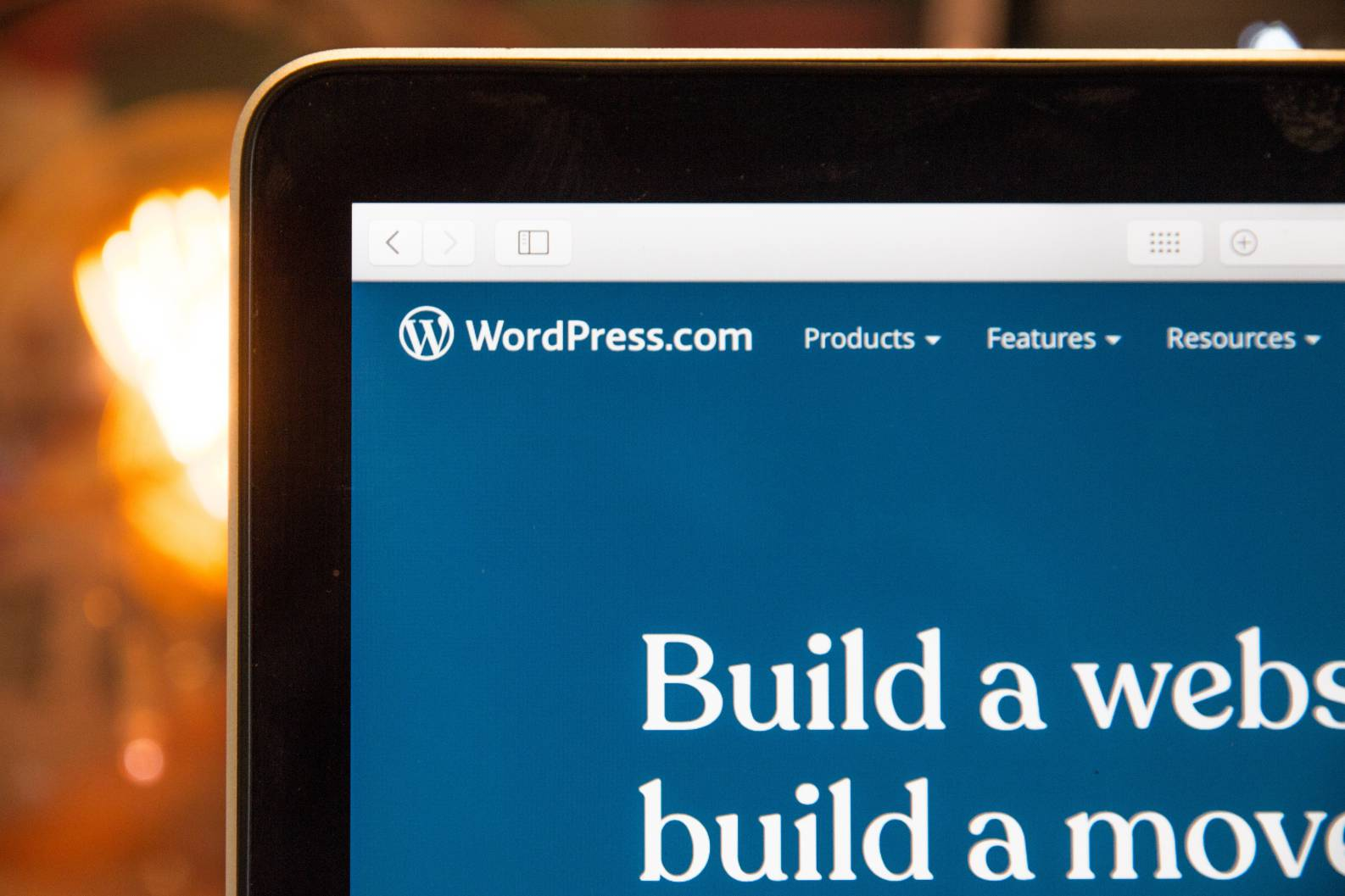 A guide on how to protect your Wordpress site
